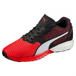 puma  IGNITE Dual Men's Running Shoes
